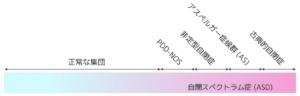 自閉スペクトラム症概念図