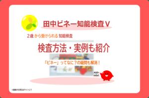 田中ビネー知能検査Ⅴ