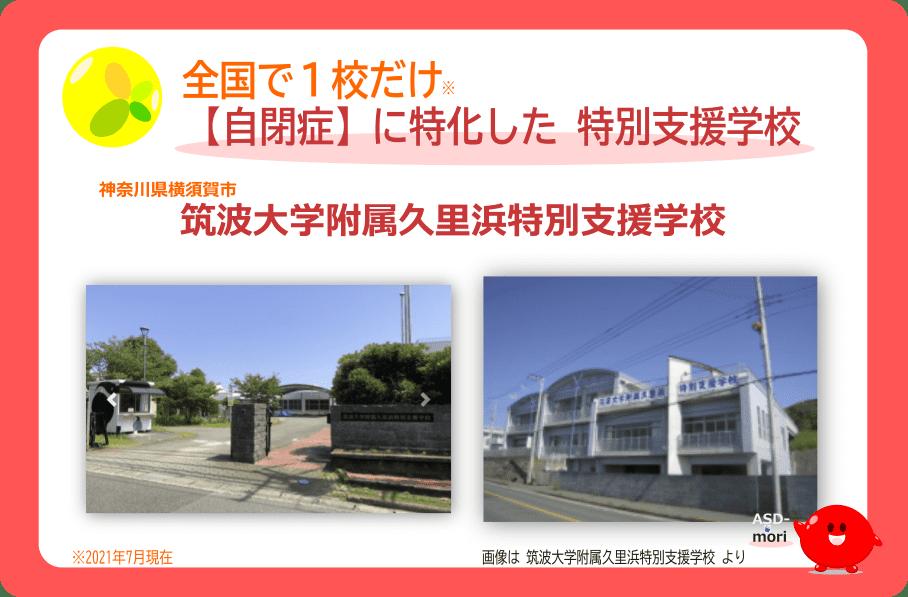 筑波大学附属久里浜特別支援学校