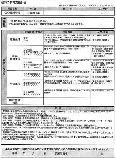 文部科学省資料の個別の教育支援計画例